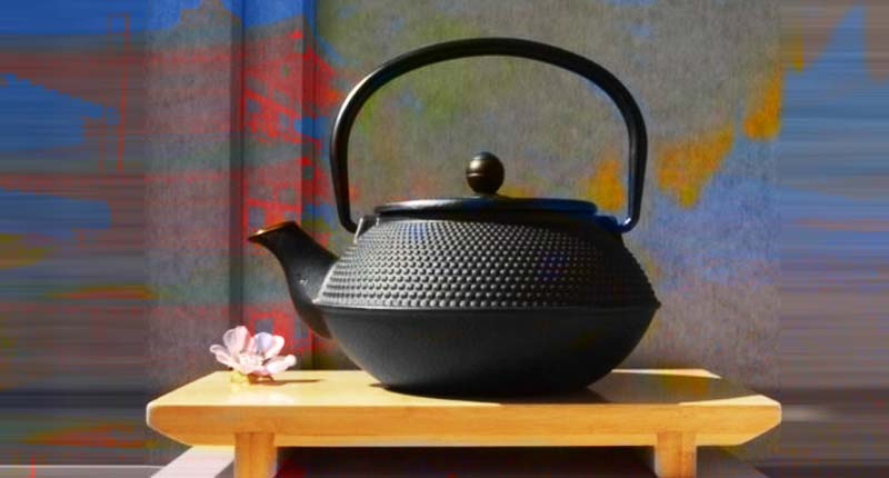 Japanese style Cast Iron black hobnail teapot kettle