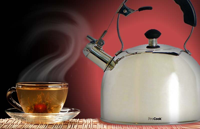 ProCook Stovetop Induction Whistling Kettle
